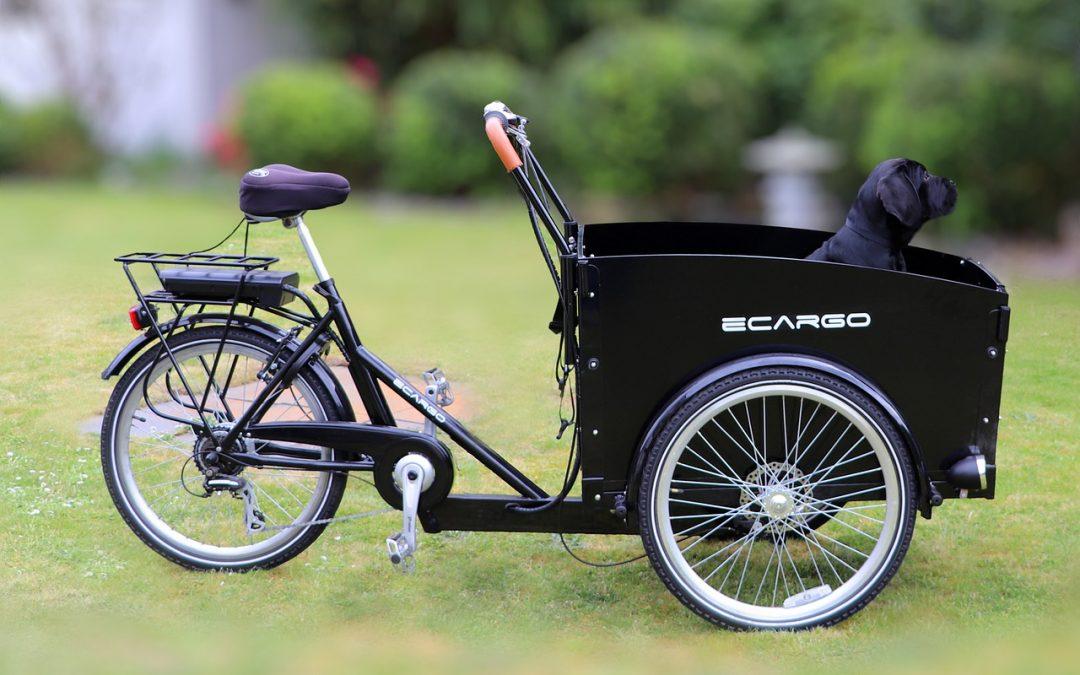 Les livraisons en vélo cargo : une tendance partie pour durer